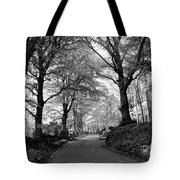 Serene Winding Country Road Tote Bag