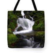 Series Of Falls Tote Bag