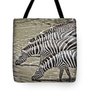 Several Thirsty Zebra Tote Bag