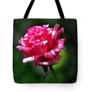 Sexy Rexy Rose Tote Bag