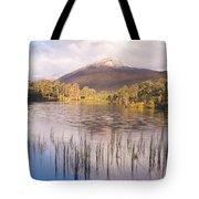 Sgurr Na Lapaich From Loch Salach A Ghiubhais In Glen Affric Tote Bag