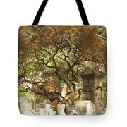 Shade For The Weary Tote Bag