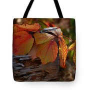 Shade In Fall Tote Bag