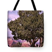 Shade Tote Bag by Tom Prendergast