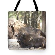 Shaded Resting Place Tote Bag