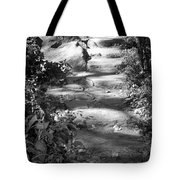 Shaded Steps Tote Bag
