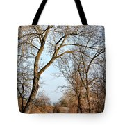 Shadow Cliffs Tote Bag