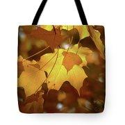 Shadow Dancing Leaves Tote Bag
