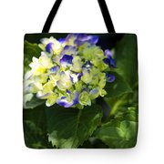 Shadowy Purple And White Emerging Hydrangea Tote Bag