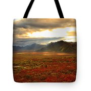 Shaft Of Sunlight Hitting The Fall Tote Bag