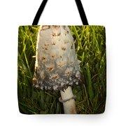 Shaggy Mane Mushroom Growing Tote Bag
