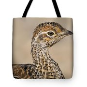 Sharp-tailed Grouse Tote Bag