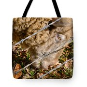 Sheep 1 Tote Bag