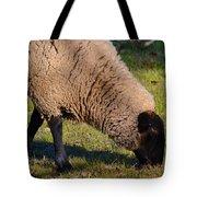 Sheep 3 Tote Bag