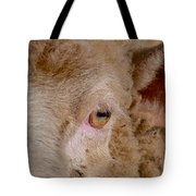 Sheep Close Up Tote Bag