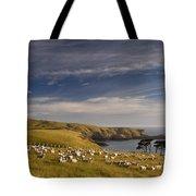 Sheep Grazing In Headland Tote Bag