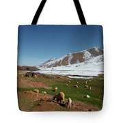 Sheep In The Atlas Mountains 02 Tote Bag