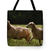 Sheep On The Move Tote Bag