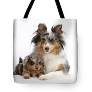Sheepdog With Puppy Tote Bag