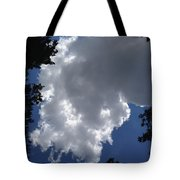 Shelby Township Tote Bag