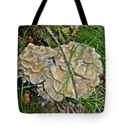 Shelf Fungus - Grifola Frondosa Tote Bag