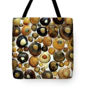 Shell Background Tote Bag by Carlos Caetano
