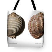 Shell Line Systems Tote Bag