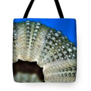 Shell With Pimples 2 Tote Bag