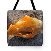 Shell Work C Tote Bag