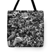 Shells Iv Tote Bag