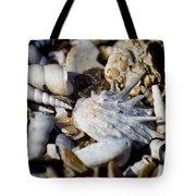 Shelly Beach V2 Tote Bag