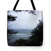 Shelter From Irene Tote Bag