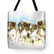 Sheltie Pups Tote Bag
