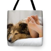 Sheltie Sleeping With Her Owner Tote Bag