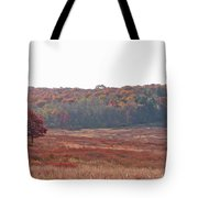 Shenandoah Plain Tote Bag