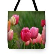 Sherbert Color Tulips Tote Bag