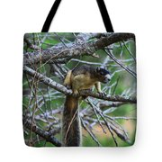 Shermans Fox Squirrel Tote Bag