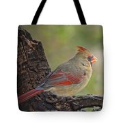 Shes An Early Bird  New Version Tote Bag