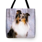Shetland Sheepdog Portrait Of A Dog Tote Bag