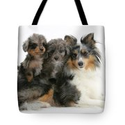 Shetland Sheepdog With Puppies Tote Bag