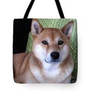 Shiba Inu Kobi-3 Tote Bag
