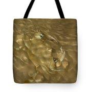 Shimmering Crab Tote Bag