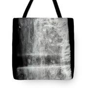 Shipworms Tote Bag