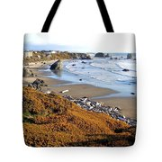 Shores Of Oregon Tote Bag