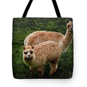 Short And Tall Tote Bag