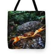 Short-tailed Crab Potamocarcinus Sp Tote Bag