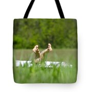 Showing Her Feet Tote Bag