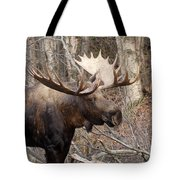 Showing His Rack Tote Bag