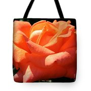 Shreveport Rose Tote Bag
