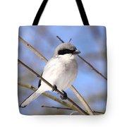 Shrike - Bird - Unique Beak Tote Bag